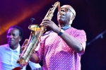 manu-dibango-festival-jazz-au-fil-du-cher_4701396.jpeg